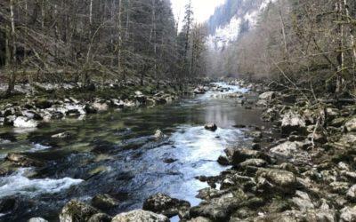 1er Mars: Ouverture de la pêche de la truite sur le Doubs frontalier
